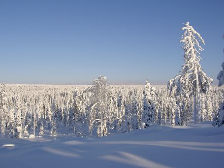 Winter in Korouoma, Finland