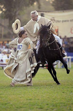 Caballo peruano de paso - Wikipedia, la enciclopedia libre