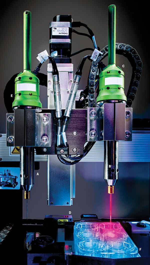 The first commercial 3-D bioprinter, Organovo's NovoGen MMX Bioprinter, is manufacturing functional liver tissues that will soon help biochemists test new drugs. Here's a look at the printing process.