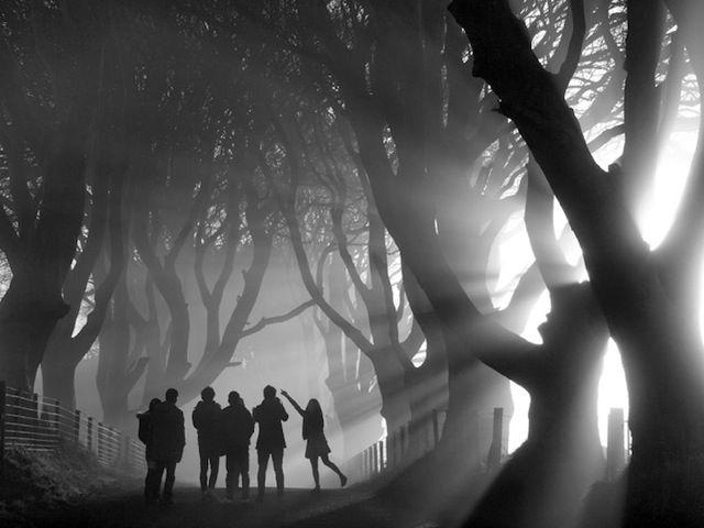 超美麗な大自然が浮き彫り、イギリスの風景写真コンテスト「Landscape Photographer of the Year 2013」 - DNA