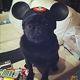 Original member of The Mickey Mouse Clubhouse