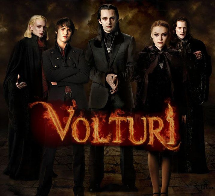 the volturi is important in the book because they control everything. they're like the presidents of the vampires. at the end of the book, they almost have to go to war with the volturi.