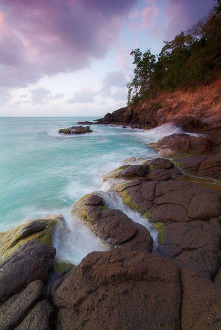 ✯ Guadalupe Island. Qué divino! ♥