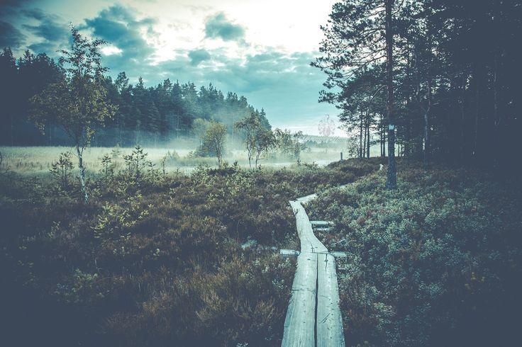Teijon kansallispuisto   Salo, Suomen paras paikka!