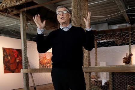 Ipotnews - Yakin bahwa orang-orang yang hidup dalam kemiskinan ekstrem dapat meningkatkan kehidupan mereka dengan beternak ayam, filantropis Bill Gates menyumbangkan ribuan an ....