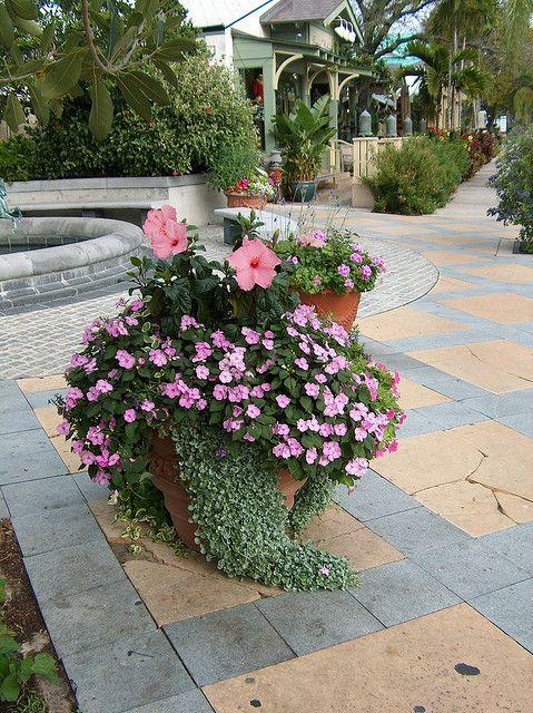Love this planter container garden pinterest beautiful container gardening and planters - Container gardening in florida ...