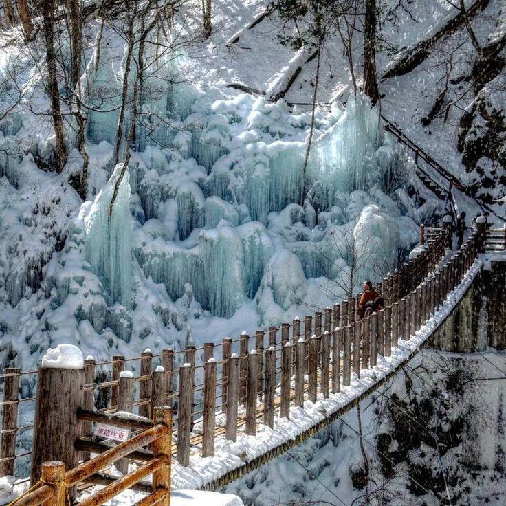Unlimited rapidshare freezes
