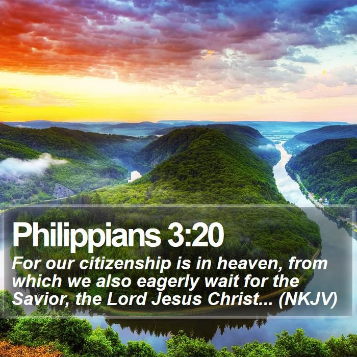 Daily Bible Quotes Text: 718 Best Bible Verses Images On Pinterest