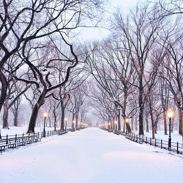 Central Park / photo by Gerry