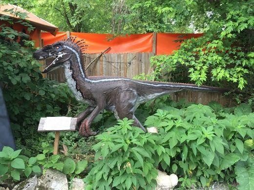 Backyard Terroru0027s Dinosaur Park