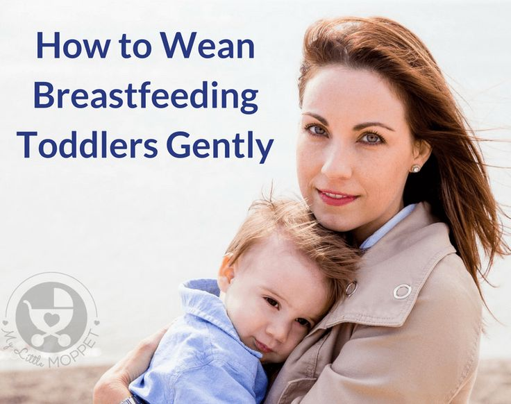 how to wean a breastfeeding toddler