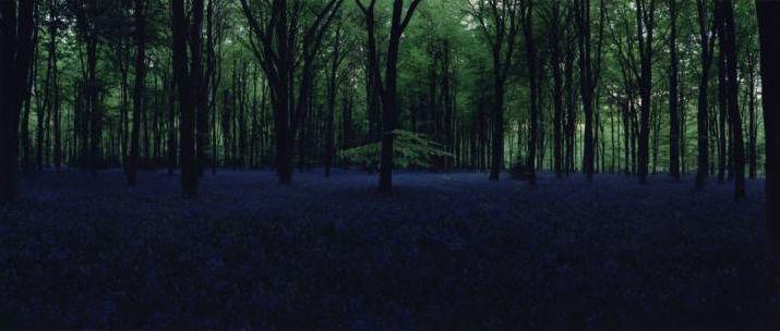 Chrystel Lebas, Blue Hour