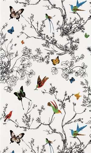 2704420 | Schumacher | Wallpaper | Birds and Butterflies | Mahones Wallpaper Shop