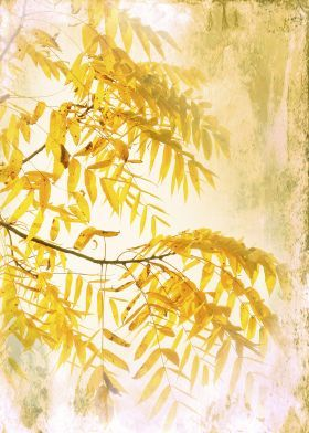 steel canvas  yellow #foliage vintage #photograph nature #flora #print #displate