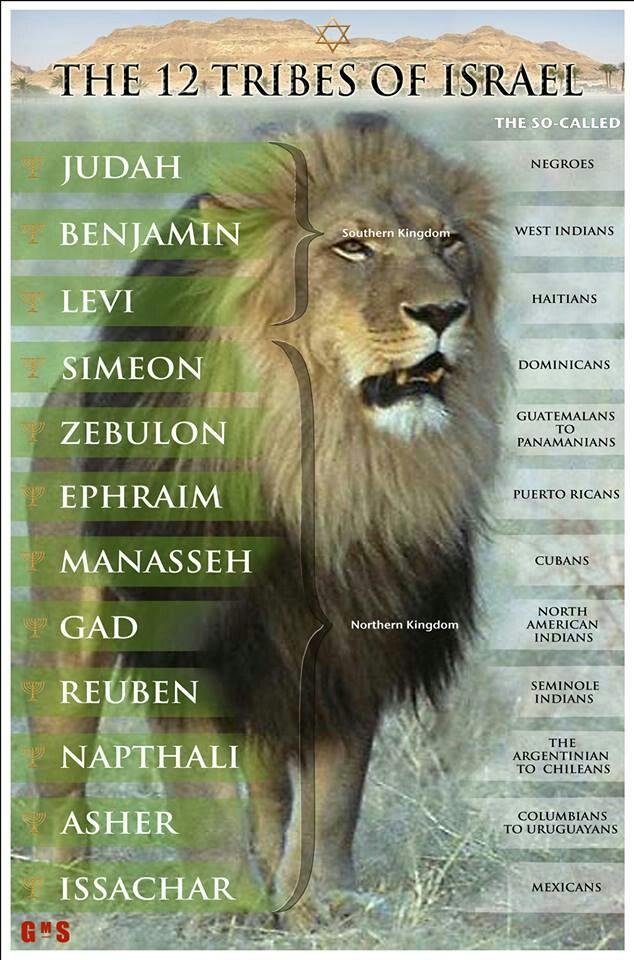 Las 12 Tribu de Juda:  Juda - Rubén - Gad - Aser - Neftalí - Manases - Simeon - Leví - Isacar - Zabulón - José  y Benjamín...