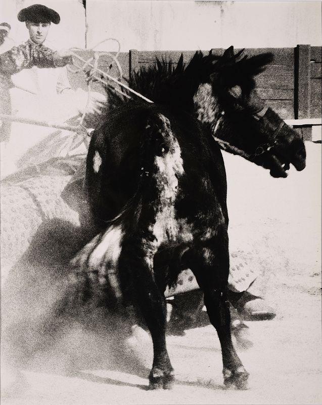 LUCIEN CLERGUE (né en 1934) Tauromachie (3 tirages) Tirages argentiques. Cachets du photographe et signatures au dos. Analoge fotoafdruk. Stempels van de fotograaf en getekend achteraan. 50 x 40cm