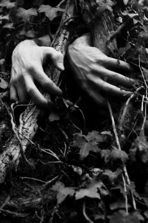 """""""The hands struggled to free themselves from their woodsy prison, causing all women passerby to call out horrendous screams, the men passerby to gasp and keep the growing fear from their hearts....and making their flesh grow deathly cold."""""""