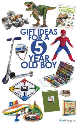 Gift ideas for 5-year-old boys | 5 year old toys, 5 year ...