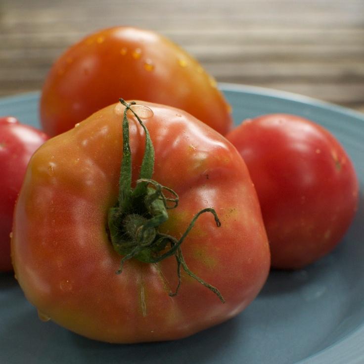 Organic Seeds Brandywine Tomato