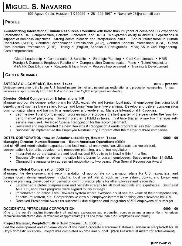 Human Resources Manager Resume Summary Beautiful Resume Sample 11 International Human Resource Executive Human Resources Resume Human Resources Resume Summary