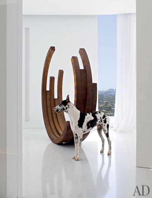 Pooches in Pictures - Design Chic