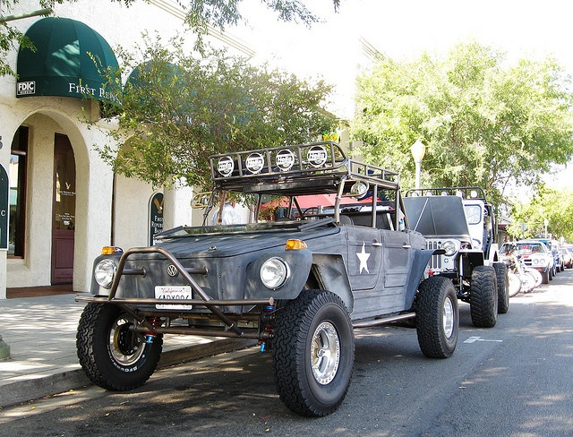VW Thing - Off Road