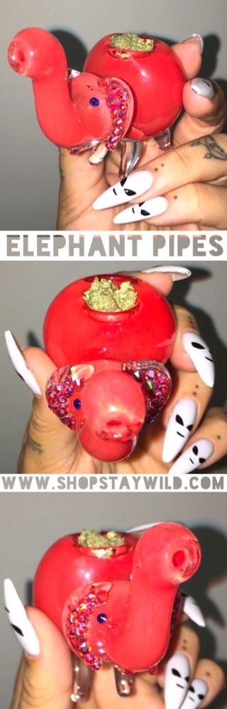 Elephant Pipe from ShopStayWild.com #love #home #ideas #things #idea #marijuana #cannabis #stoned #high #cannabiscures #legalize #420 #710 #wax #shatter #glass #vape #style #ideas #ganja #kush #cbd #bath #smoke #bongbeauties #alien #ganjagirls #potprinces