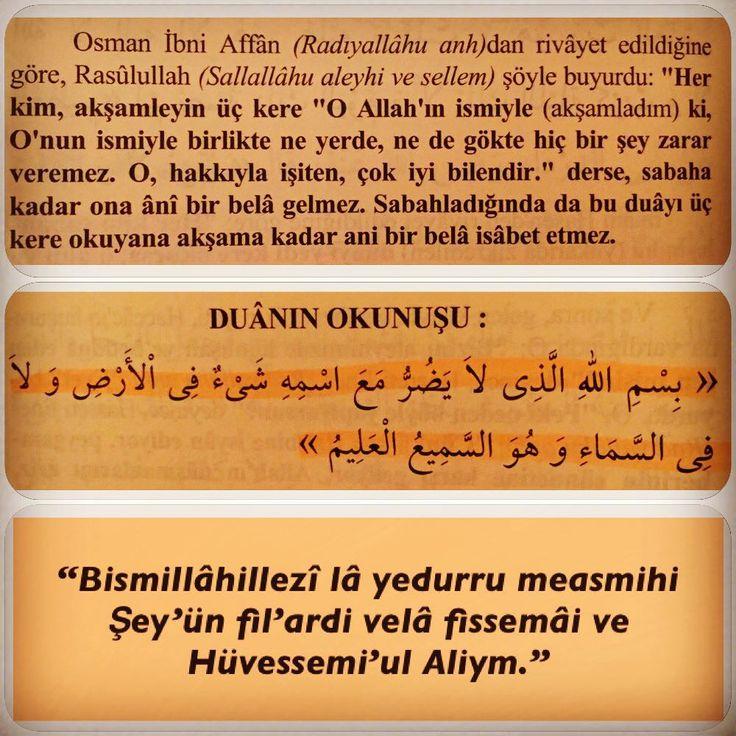 "Instagram'da @dogruilimdogruamel: ""Ebu Davud,5088,4/23 ; Tirmizi 3448 ; Ibni…"