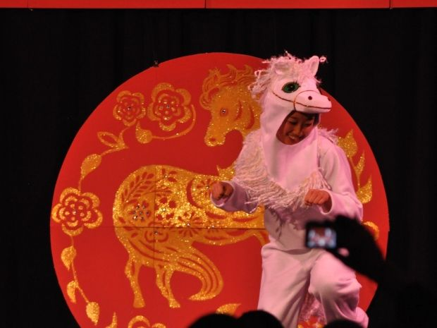 Whitehorse welcomes Chinese Year of the Horse
