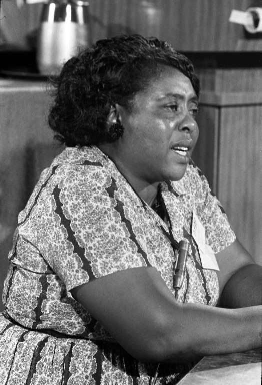 Fannie Lou Hamer (1917-1977) Fannie Lou Hamer fought for civil rights as a leader of the movement and member of the Student Nonviolent Coordinating Committee, and also co-founded the Mississippi Freedom Democratic Party in 1964. She got involved with efforts to register black voters in the South in 1962, and during her time with SNCC took part in peaceful demonstrations that left her exposed to beatings and violence. As the Vice Chair of the Mississippi Freedom Democratic Party, Hamer…