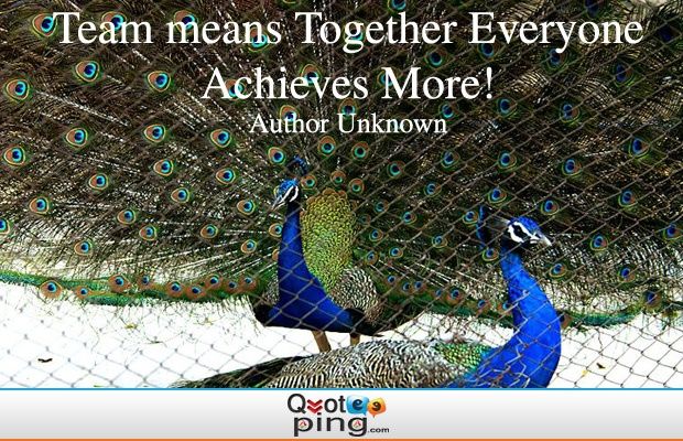 http://www.quoteping.com/Picture%20Quotes/Teamwork/