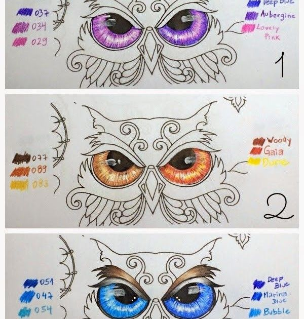 Pin By Neo Tree On Coloring Techniques Enchanted Forest Coloring Owl Eyes Coloring Page Ultra Coloring Owl Coloring Pages Owl Eyes Enchanted Forest Coloring