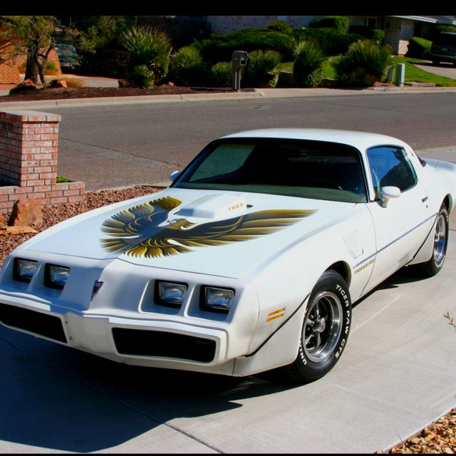 79 Trans Am - MY CAR!! I owned this car and restored it! Never should have sold it!