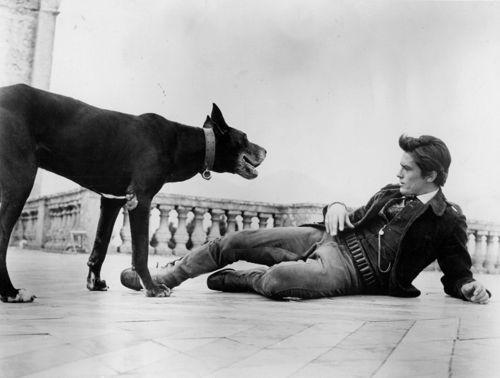 """Actor Alain Delon (b. 1935), in Luchino Visconti's film, """"Il Gattopardo,"""" 1963."""
