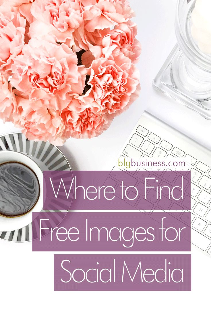 Where to Find Free Images for Social Media [Updated January 2018] | BLG Business Solutions