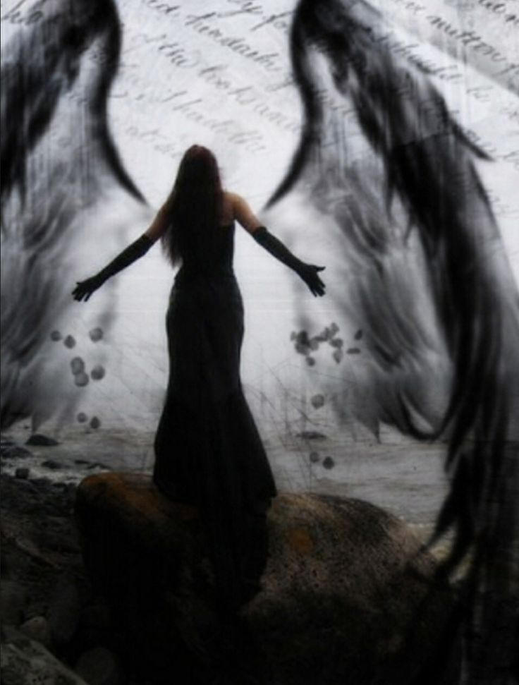 #angel #wings