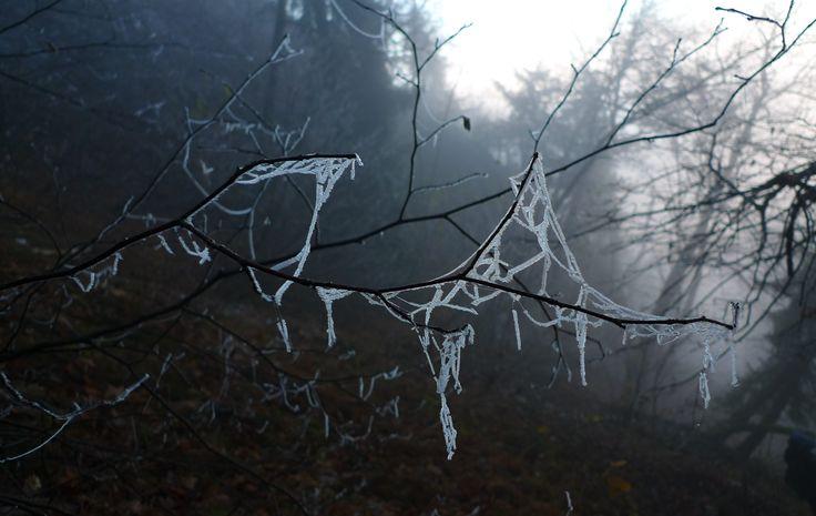 net of ice