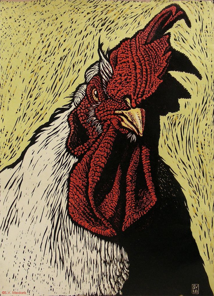 'Your Days are Numbered Cornish Cock!' * 22in x 16in * 4 color reduction woodcut on handmade paper; S. V. Medaris