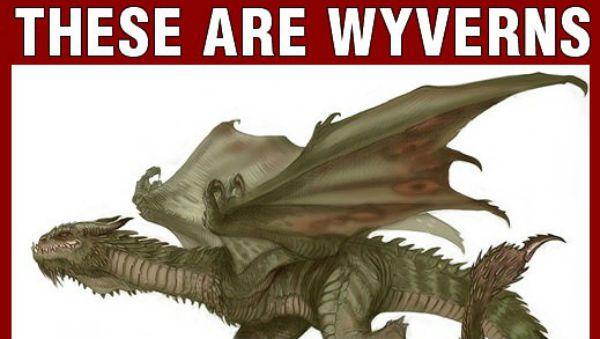 Wyverns Vs Dragons   Meme Collection   Pinterest   Dragon