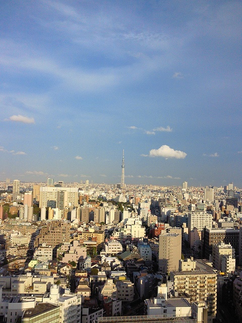 the Tokyo Skytree (taken from the 25th floor of Bunkyo Civic Center)
