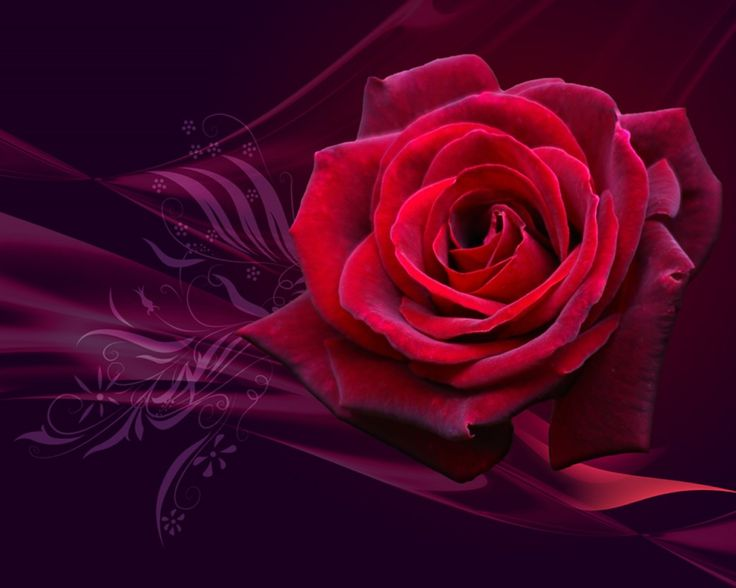 Group Of Twin Crystal Roses Wallpaper