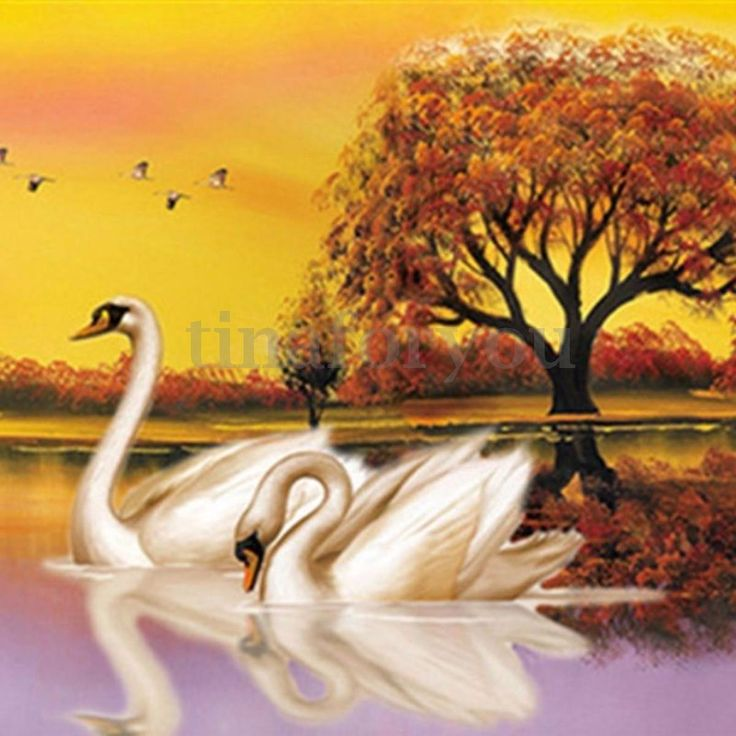 5D Diamond Painting SWAN IN LOVE Cross Stitch Kit DIY Home Wall Decor Embroidery