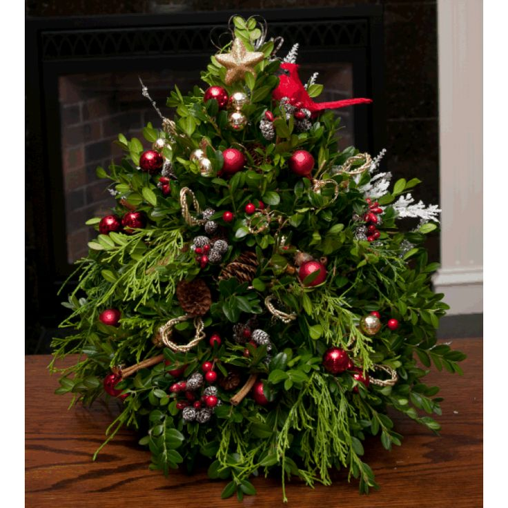 16 best Boxwood Christmas Trees images on Pinterest | Boxwood tree ...