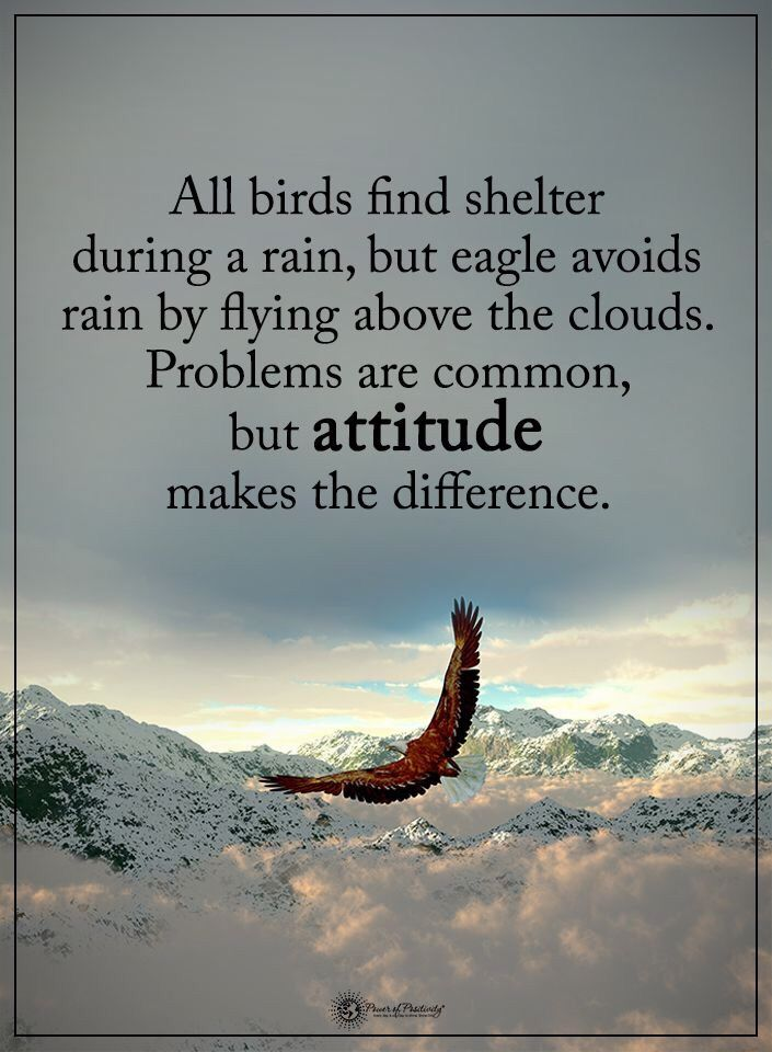 Even When It Rains Fly Quotes Home Quotes And Sayings Cloud Quotes