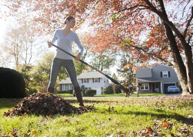 Learn about fall garden care and how to winterize yards in autumn. These winterizing tips will help you ready the landscape for the off-season.