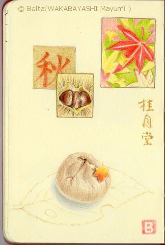 "2013_10_18_kurikinton_01_s Wagashi ""Kurikinton""  Autumn chestnut confection.  Boiled chestnuts mashed with sugar and twisted in fabric into shape makes kurikinton.  Very delicious!  for this drawing I used: Faber castell polychromos Moleskine sketchbook  © Belta(WAKABAYASHI Mayumi )"
