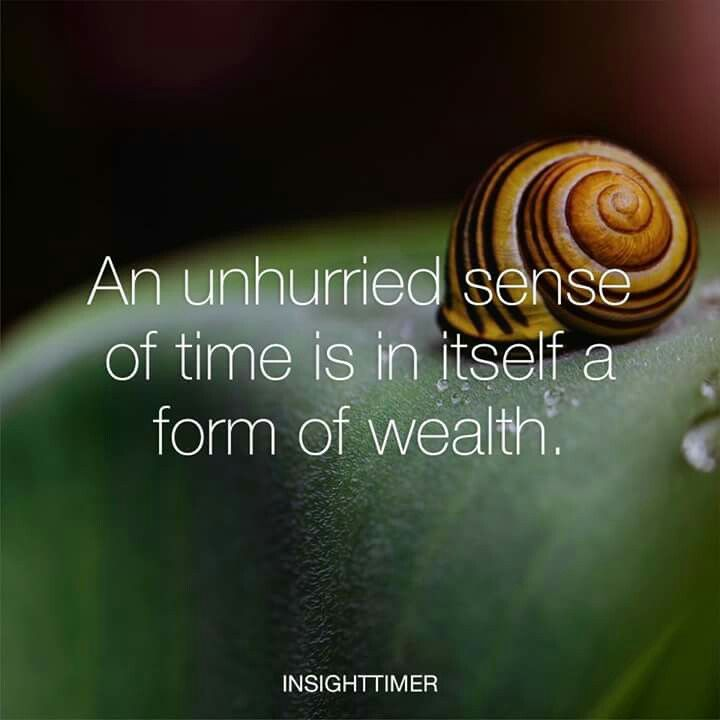 """""""An unhurried sense of time is in itself a form or wealth."""" *Stop the glorification of being busy. --- Very true. Slow down. ☞ https://www.pinterest.com/pin/317503842456649897/ Relax and let it all be. ☞ https://www.pinterest.com/pin/317503842451908026/ Just go with the flow that God created for you. #happy #life #quote"""