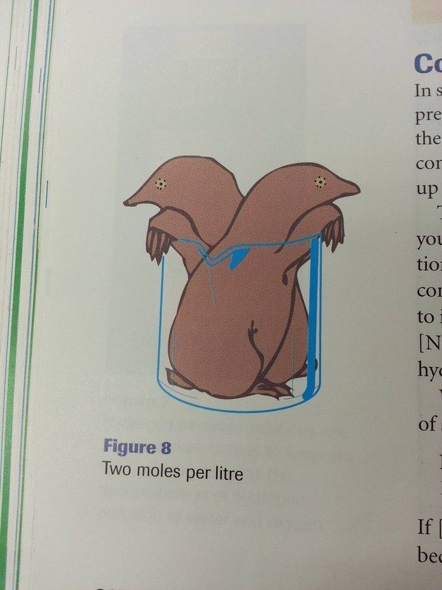 This textbook illustration. | 36 Things That Prove Scientists Have Too Much Time On Their Hands