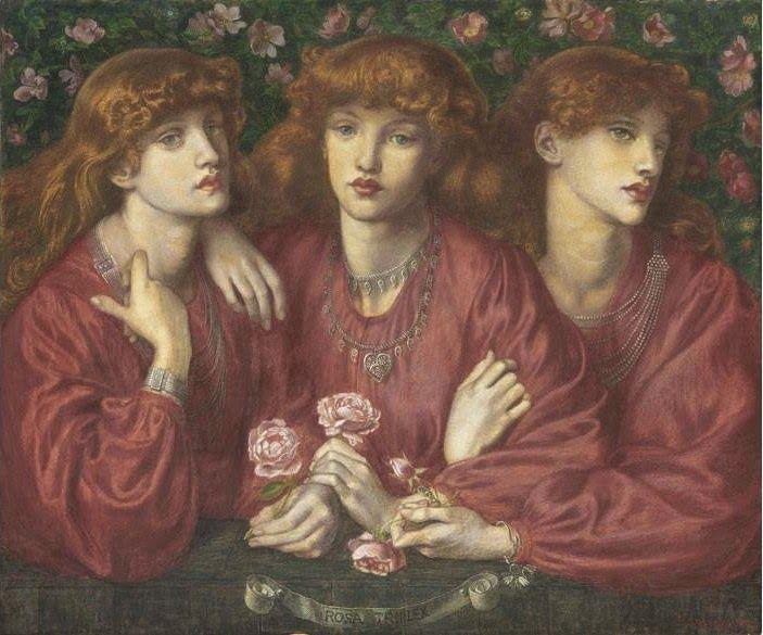 Rossetti.... Rosa Triplex