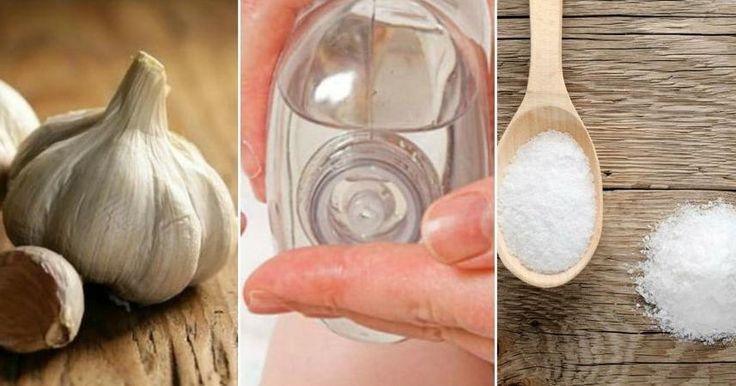Gracias a estos 6 remedios naturales y caseros los piojos dejarán de ser un problema al que tengas que hacer frente constantemente.
